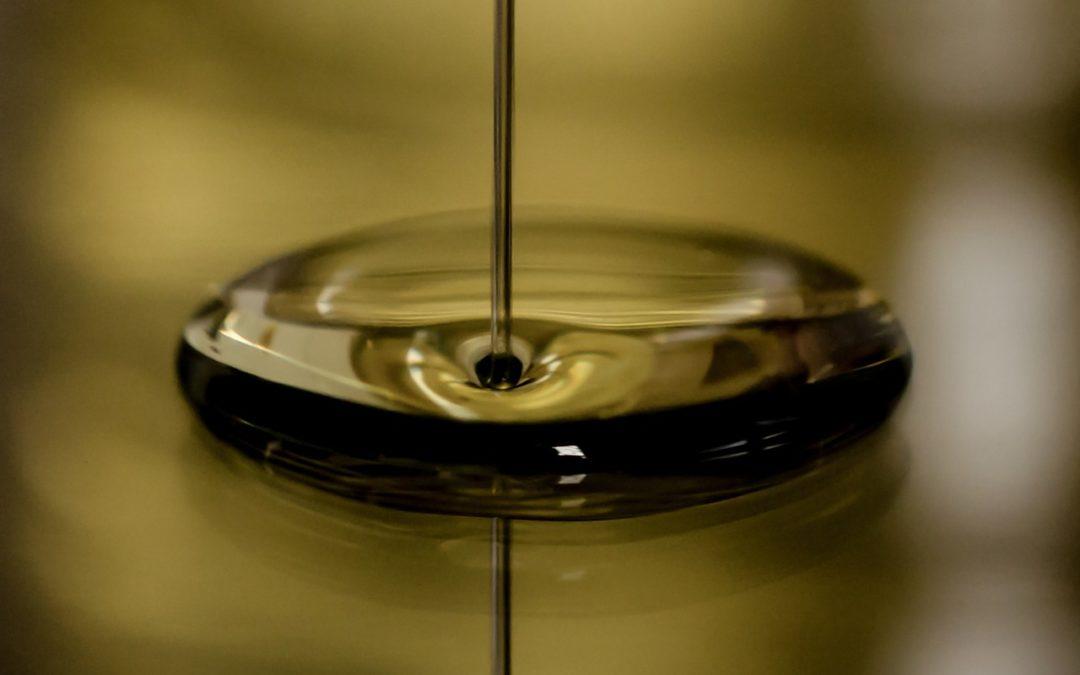 ¿Qué función tiene el aceite del motor y cómo reducir su consumo?